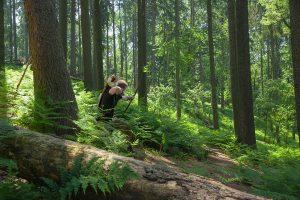 Waldparcours der Pfeil&BogenWelt